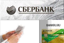 Сбербанк Visa Gold, как пользоваться кредитной картой